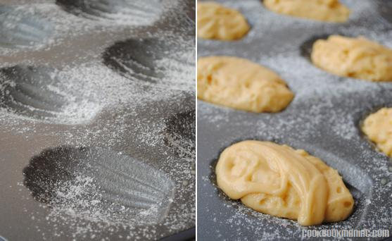 Marcel Proust Madeleines Cookies