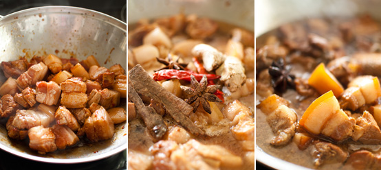 shaoxing rice wine soy sauce star anise cassia bark ginger red chilli dried fushsia dunlop
